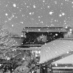 雪撮影のコツと設定!ストロボを使って雪や雨の写真を撮ってみよう!