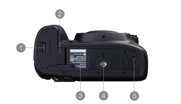 EOS 5D Mark IV 下面