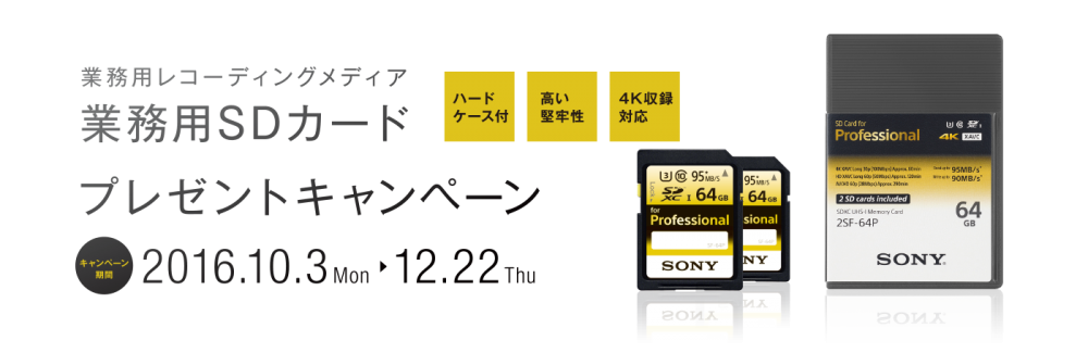 SONY業務用SDカード 2SF-64P