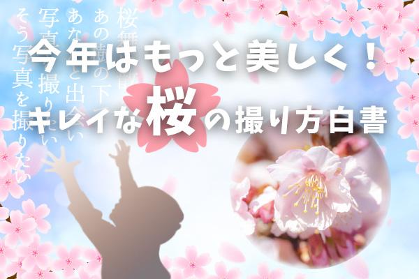 桜の撮り方白書